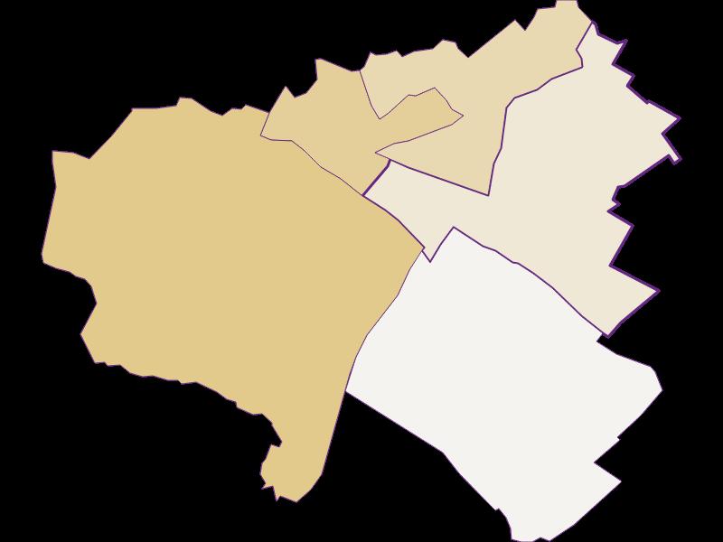 Демография с 1900 года в Kittsee