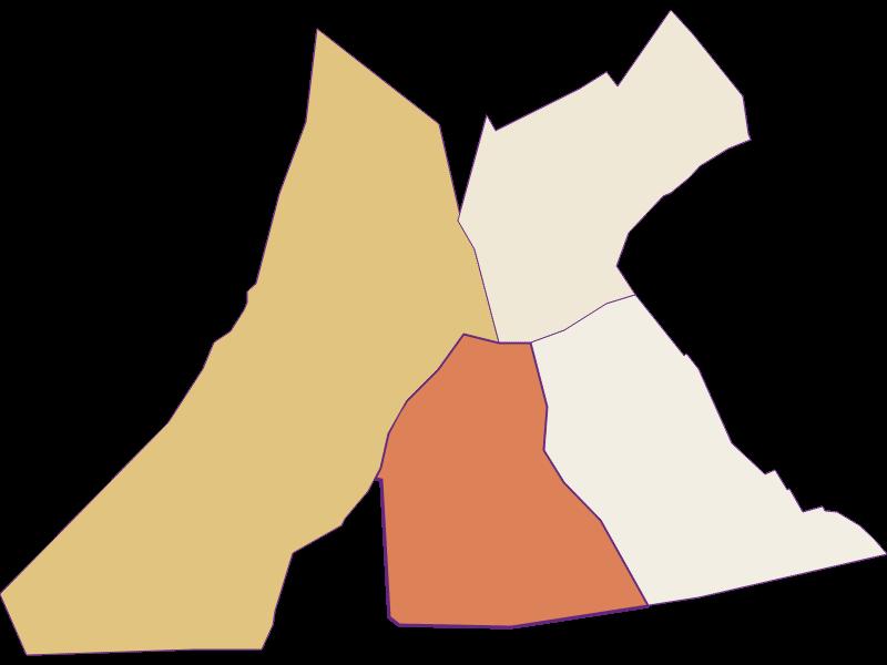 Демография с 1869 года в Pamhagen