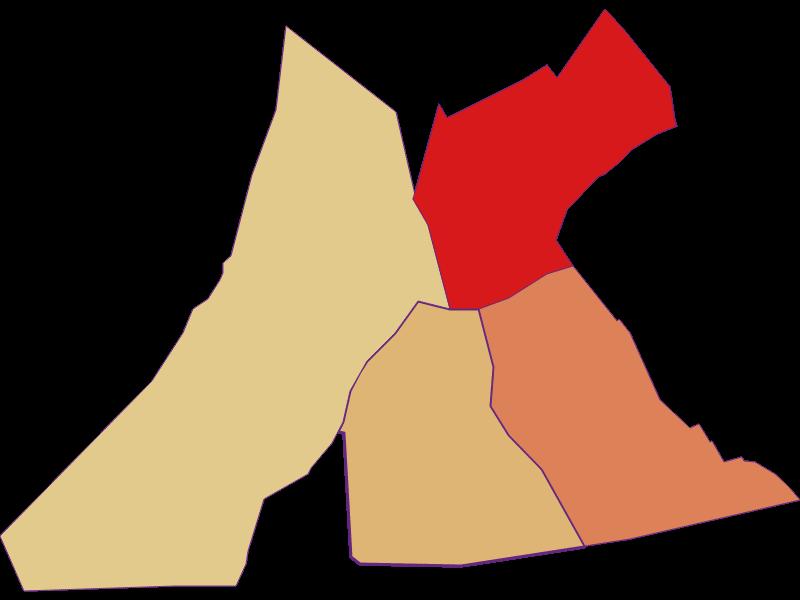Демография с 2011 года в Pamhagen