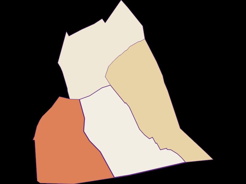 Демография с 1869 года в Wallern im Burgenland