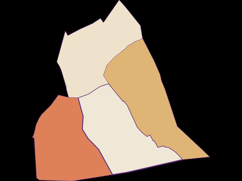 Демография с 1900 года в Wallern im Burgenland