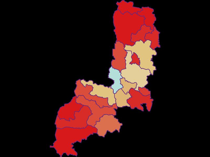 Демография с 1869 года в Gmünd