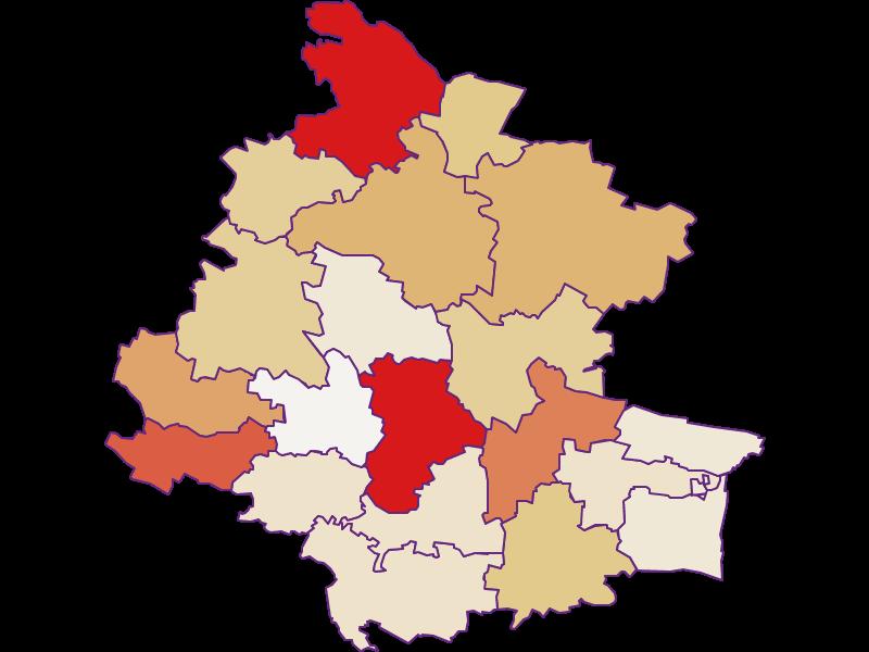 Демография с 2011 года в Horn
