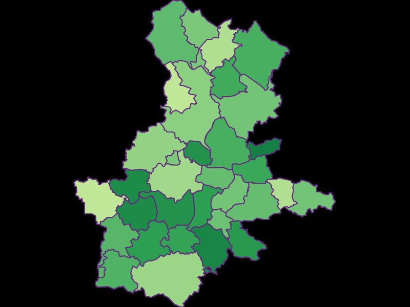 Youth in Grieskirchen