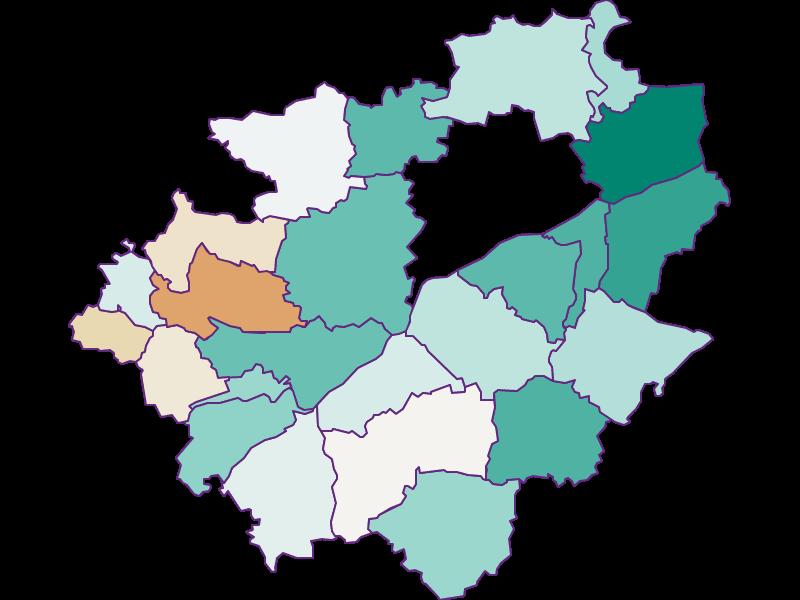Демография с 1900 года в Wels-Land