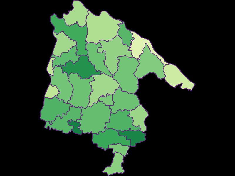 Youth in Schärding