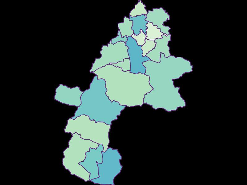 Доля иностранцев в Gmunden