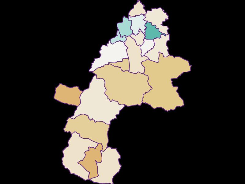 Демография с 2011 года в Gmunden