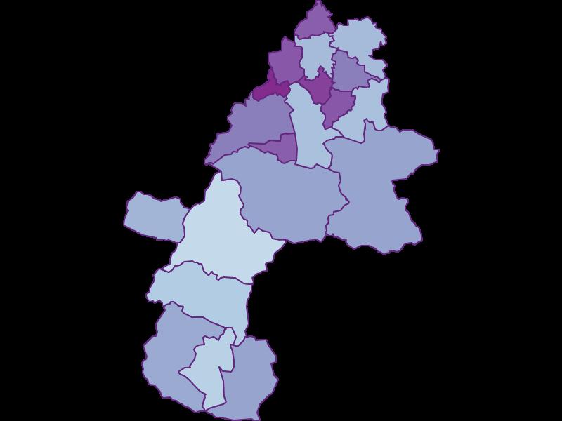 Маятниковые мигранты в Gmunden