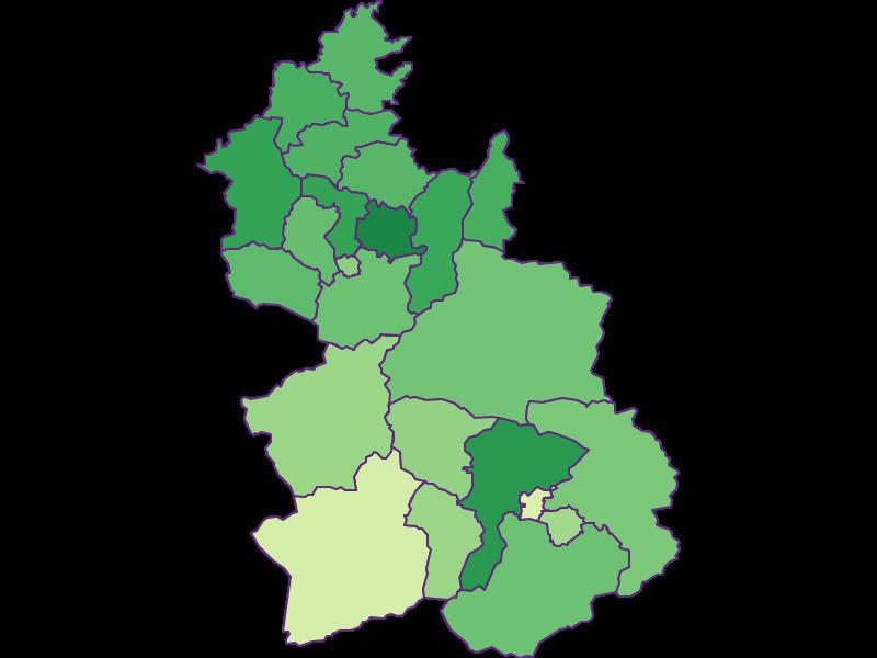 Youth in Kirchdorf an der Krems