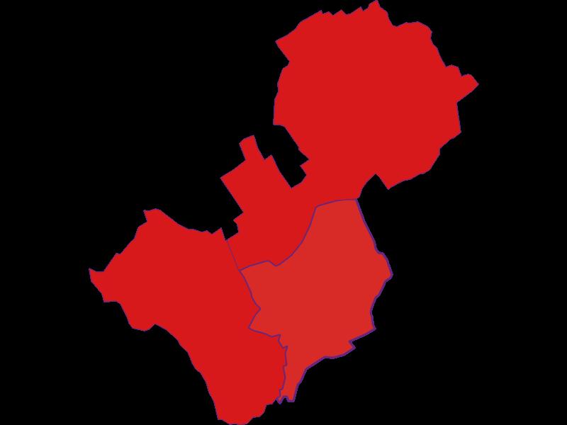Демография с 1869 года в Lutzmannsburg