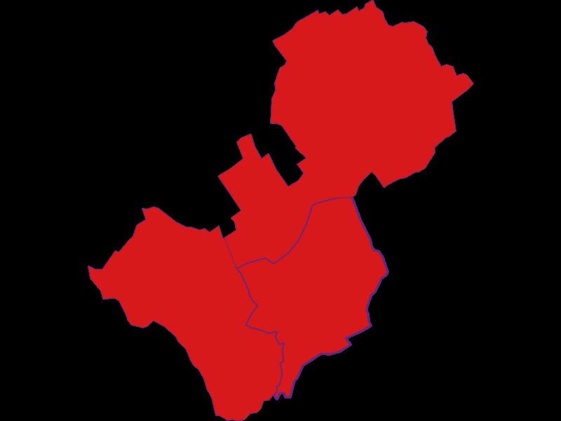 Демография с 1900 года в Lutzmannsburg