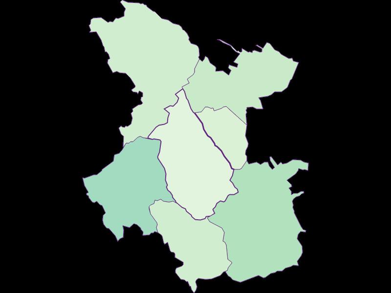 Доля иностранцев в Pilgersdorf