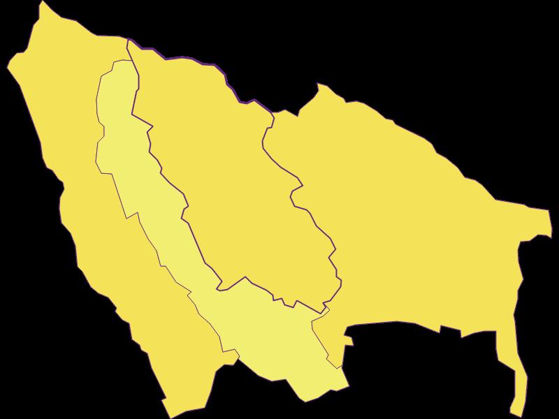 Population density in Ritzing