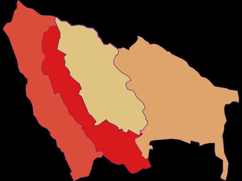 Population development since 1869 in Ritzing