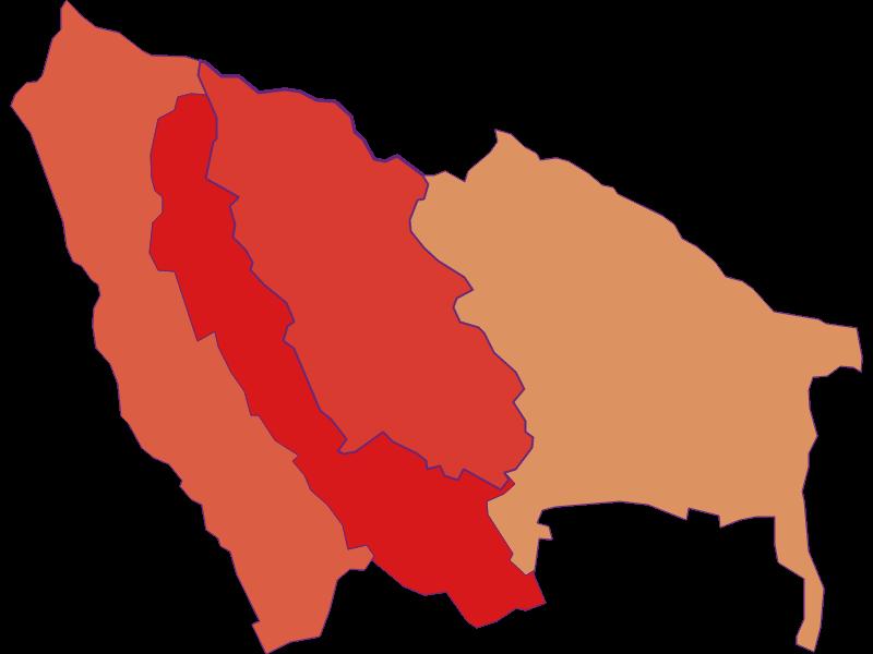 Population development since 1900 in Ritzing