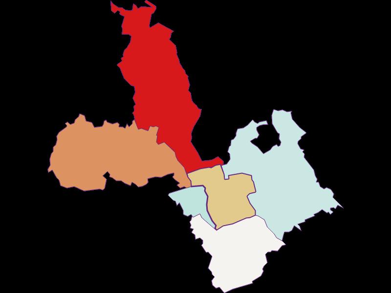 Демография с 2011 года в Grafenschachen