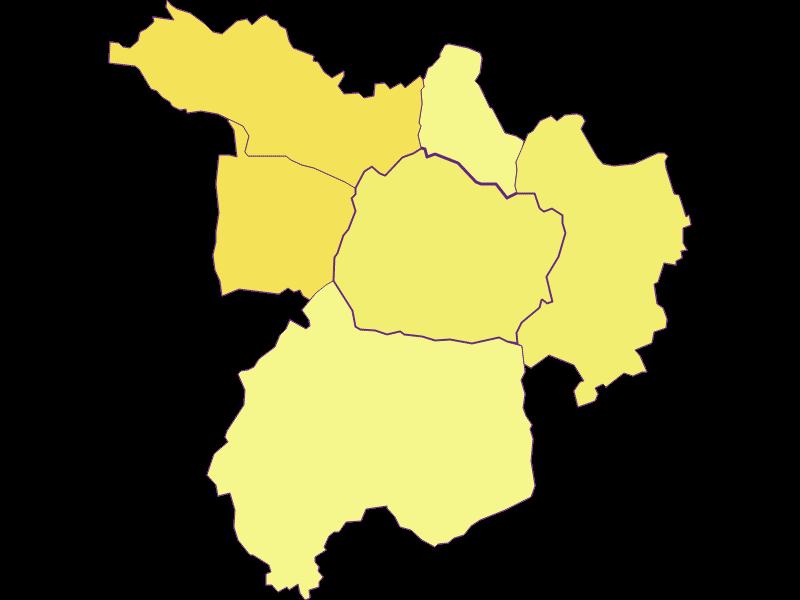 Population density in Kohfidisch