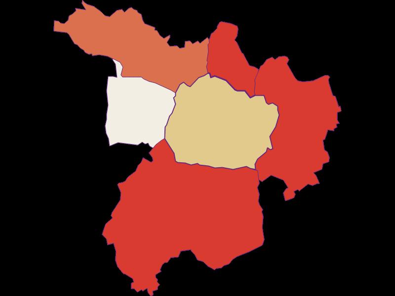 Population development since 1869 in Kohfidisch