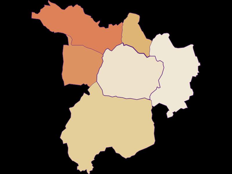 Population development since 2011 in Kohfidisch