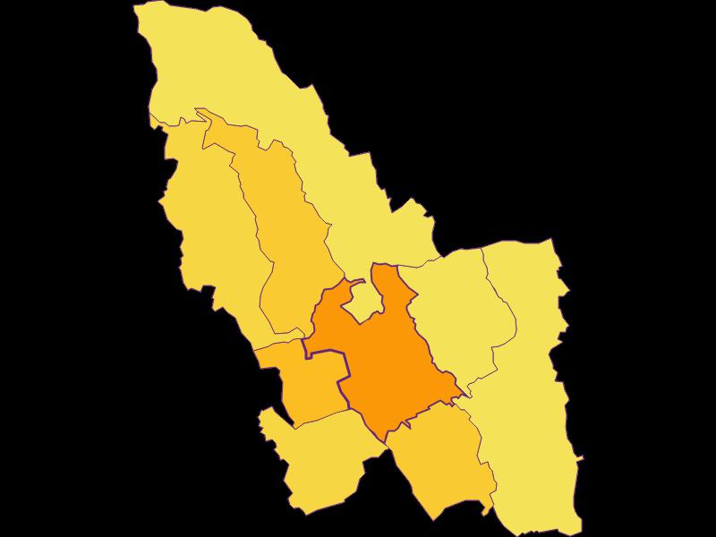 Плотность населения в Pinkafeld