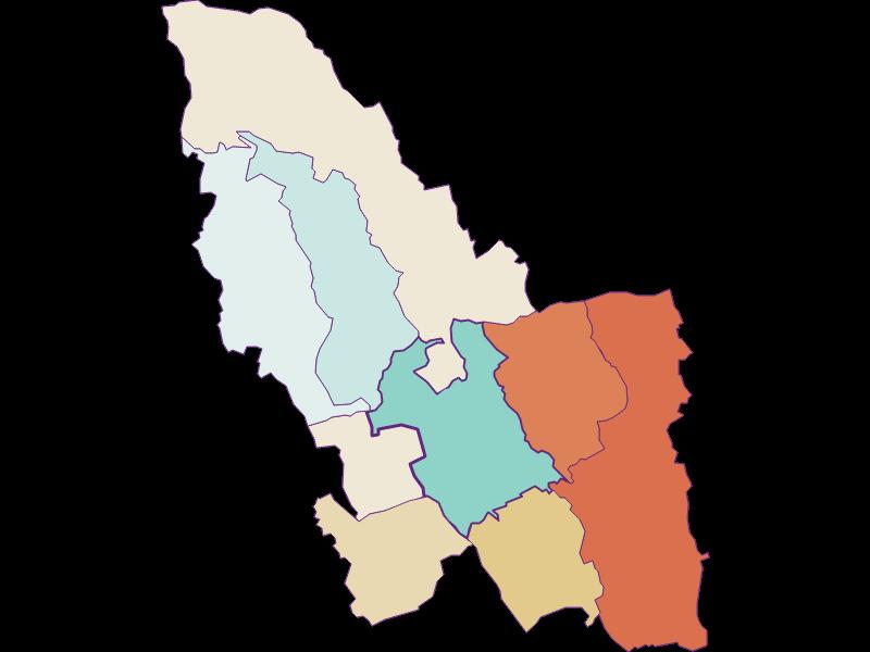 Демография с 1869 года в Pinkafeld