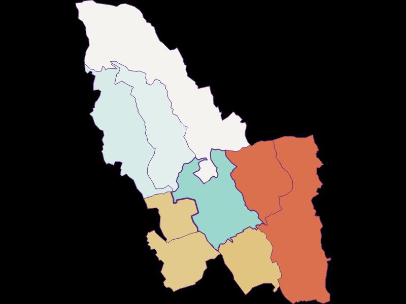 Демография с 1900 года в Pinkafeld