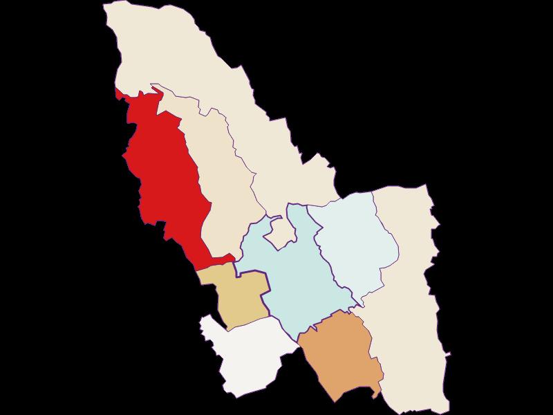Демография с 2011 года в Pinkafeld