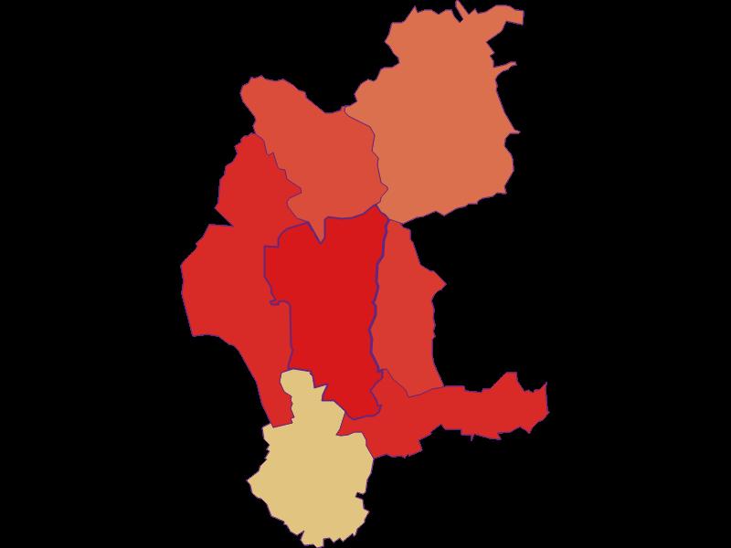 Демография с 1869 года в Weiden bei Rechnitz