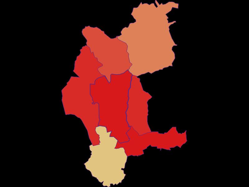 Демография с 1900 года в Weiden bei Rechnitz