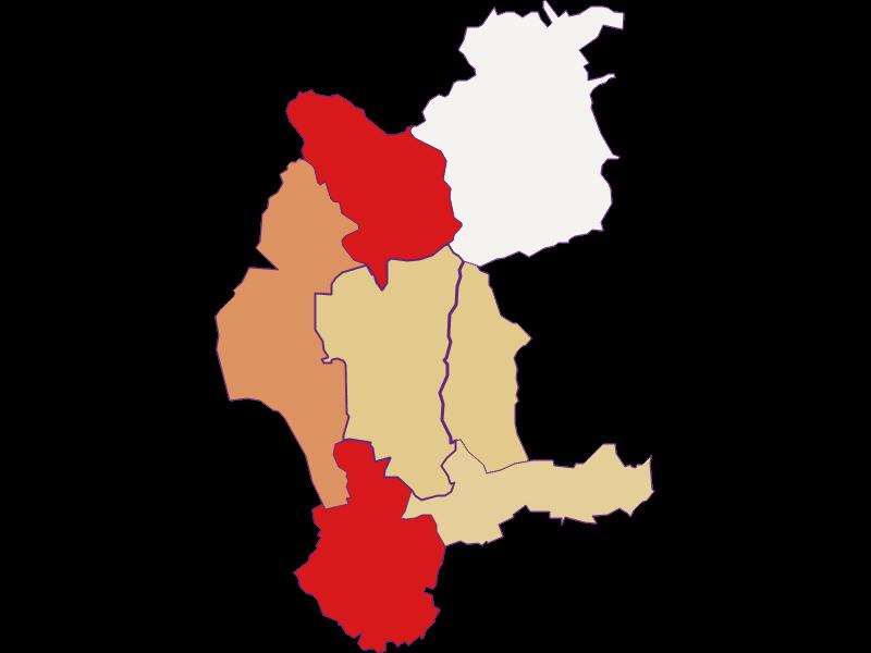 Демография с 2011 года в Weiden bei Rechnitz