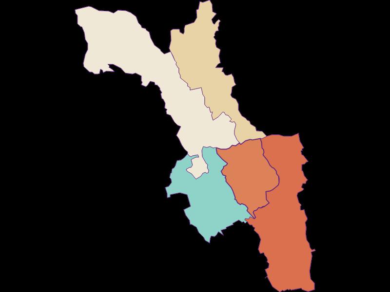 Population development since 1869 in Wiesfleck
