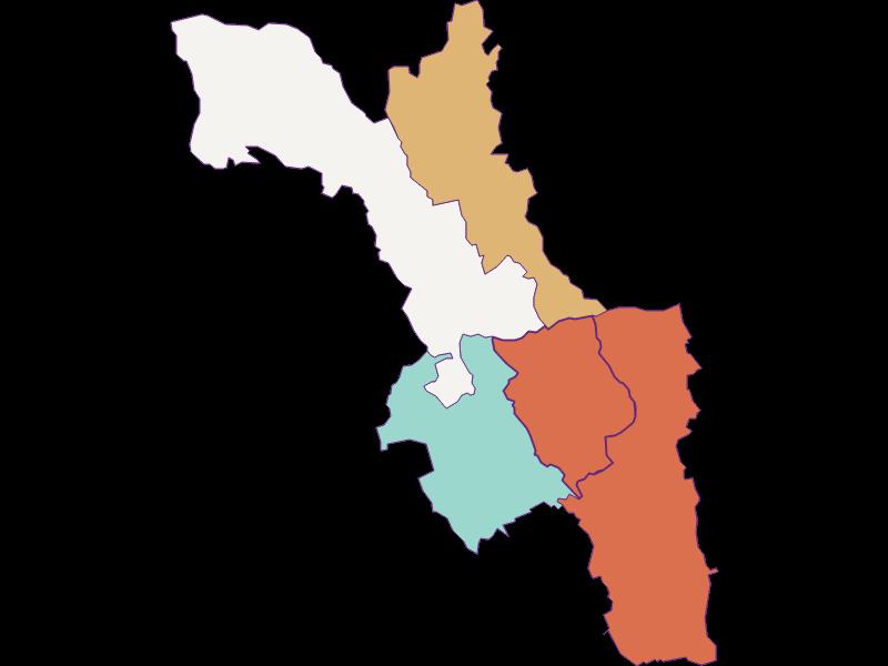 Population development since 1900 in Wiesfleck
