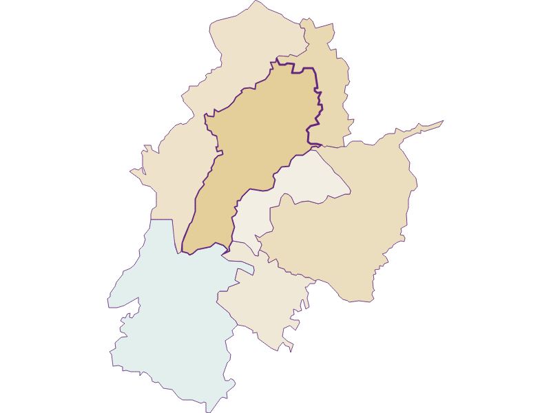 Population development 1869-2018 | Waldzell