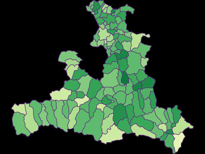 Демография подростков   Зальцбург