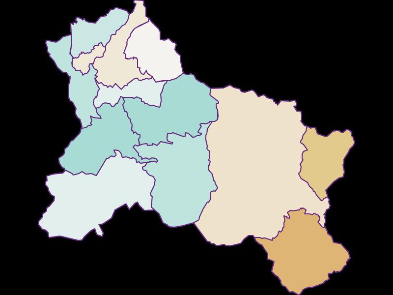 Демография с 2011 года в Hallein