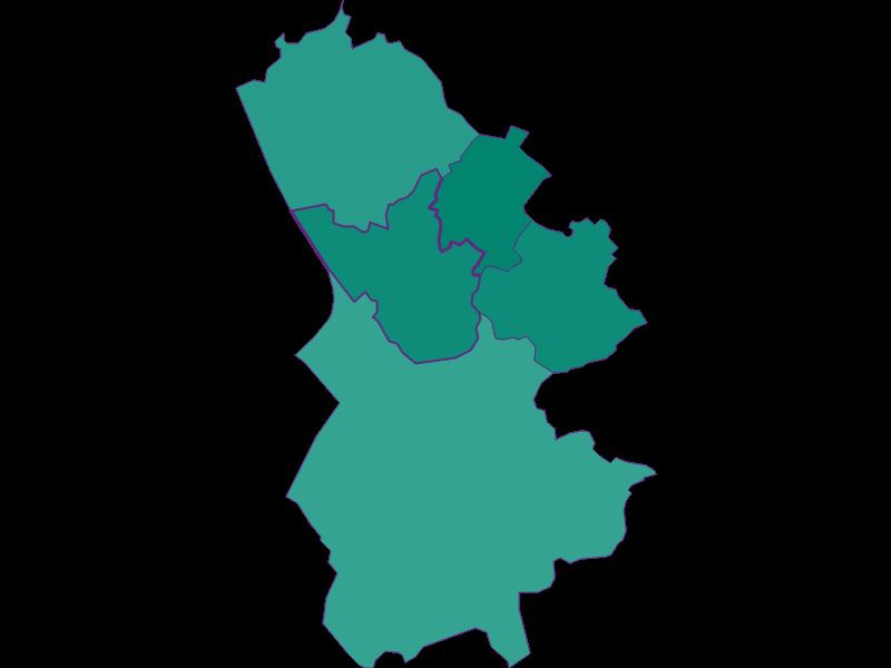 Демография с 1900 года в Bergheim