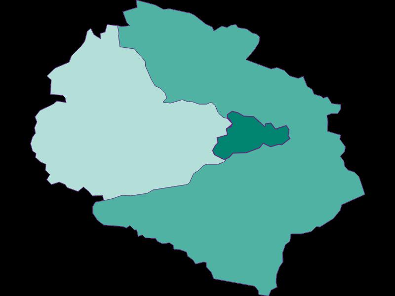 Прирост населения за 1869-2018   Schwarzach im Pongau