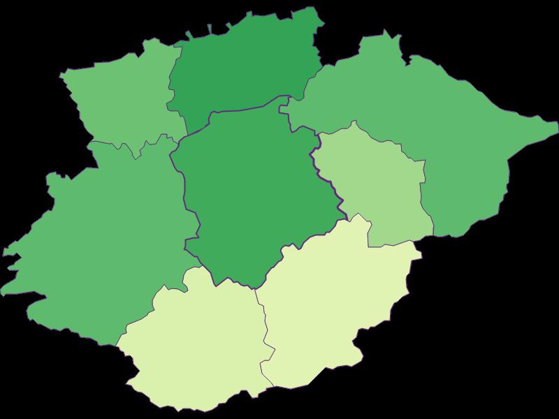Youth in Frankenfels