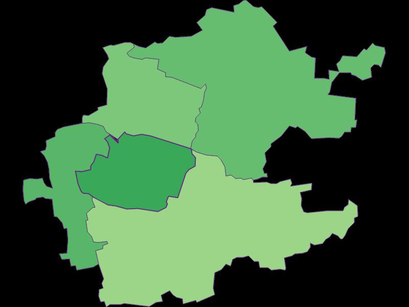 Молодежь в Inzersdorf-Getzersdorf
