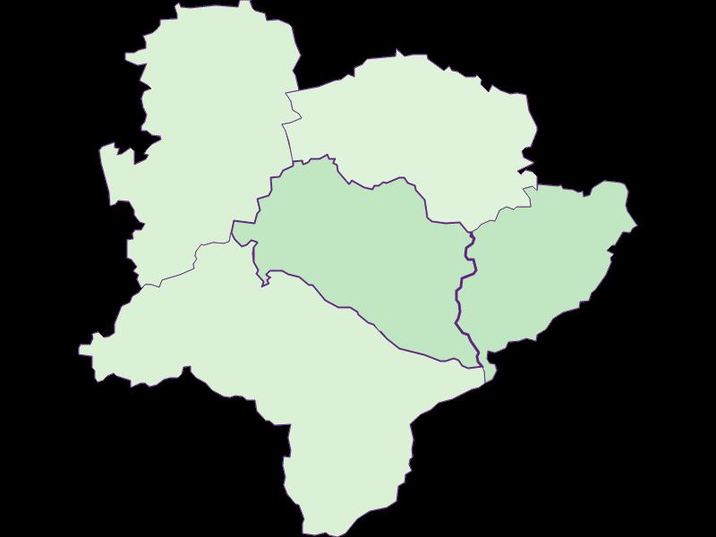 Доля иностранцев в Rabenstein an der Pielach