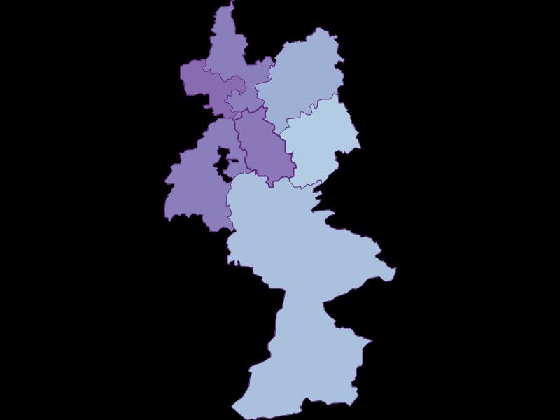 Маятниковые мигранты в Reinsberg