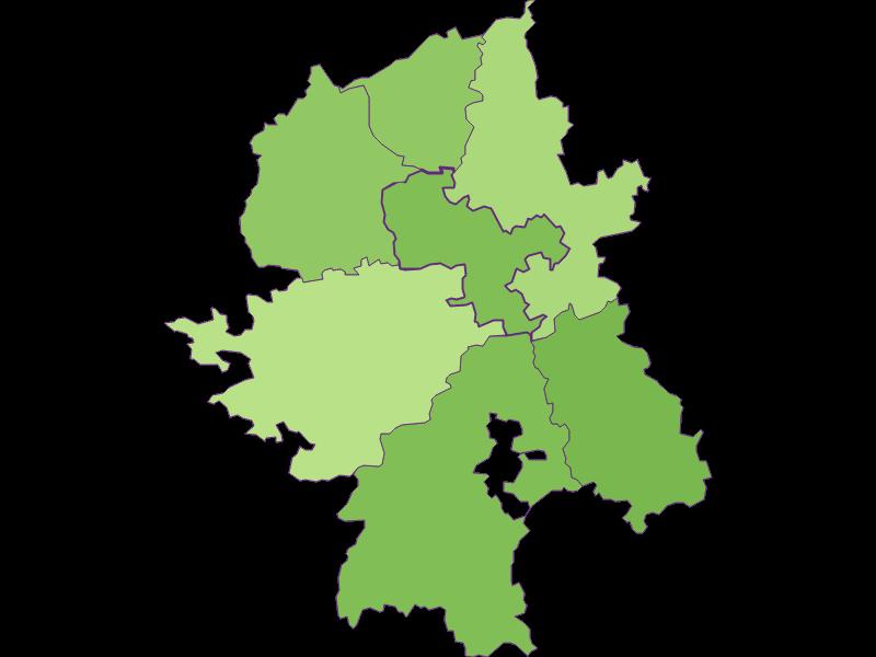 Заселенность в Wang