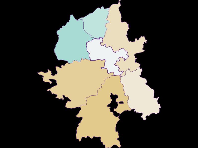 Демография с 1869 года в Wang