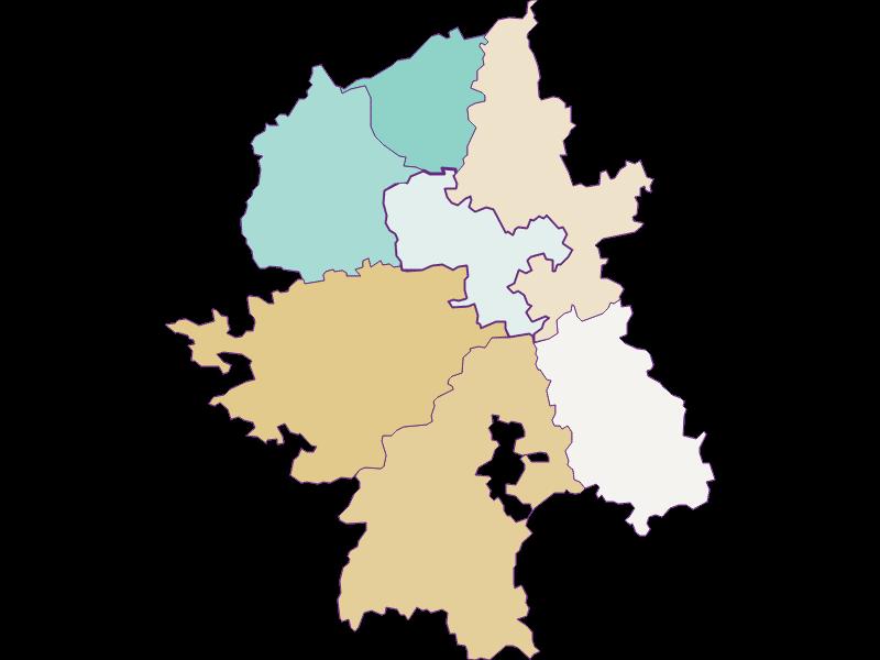 Демография с 1900 года в Wang