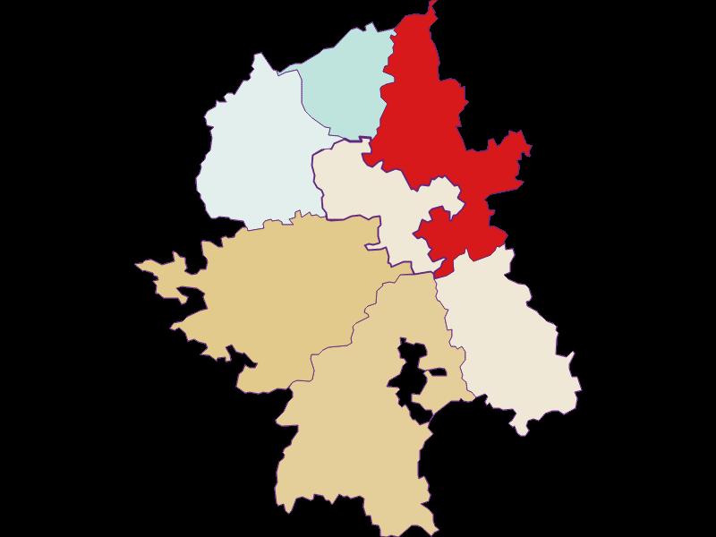 Демография с 2011 года в Wang