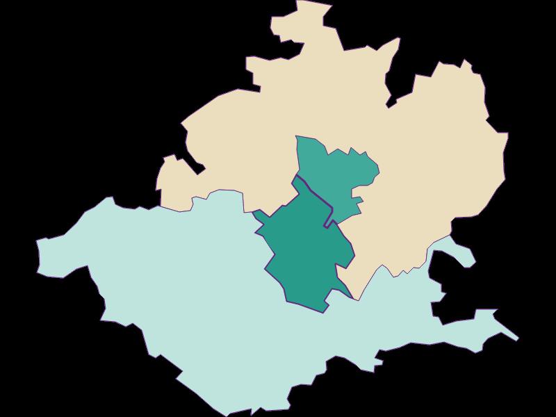 Демография с 1869 года в Wieselburg