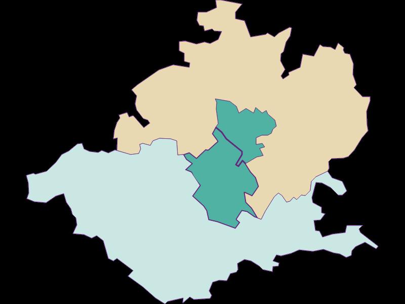 Демография с 1900 года в Wieselburg