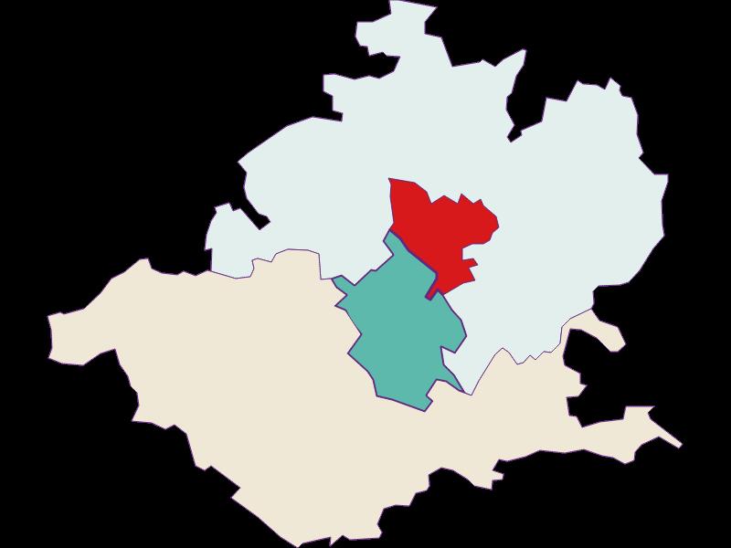 Демография с 2011 года в Wieselburg