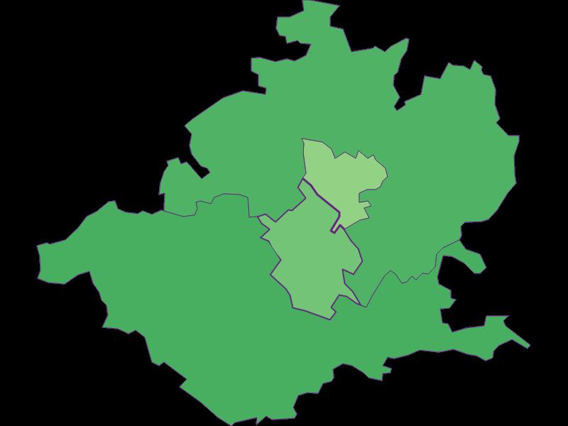 Молодежь в Wieselburg